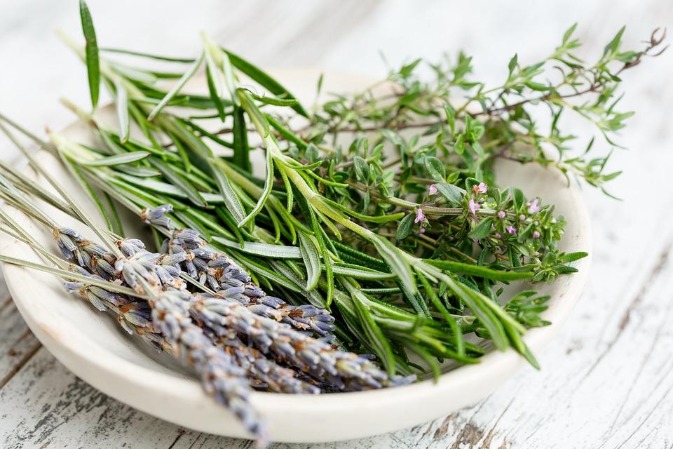 Que sont les herbes de Provence ?